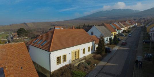 Historický dům Horní Věstonice